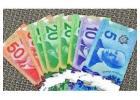 Buy Real Canadian 50 Dollar Bill (CAD)